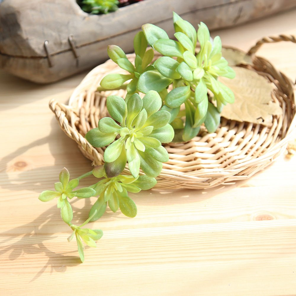 Amazon.com: cqure Fake Succulent Real Looking Faux Plants Rattan ...