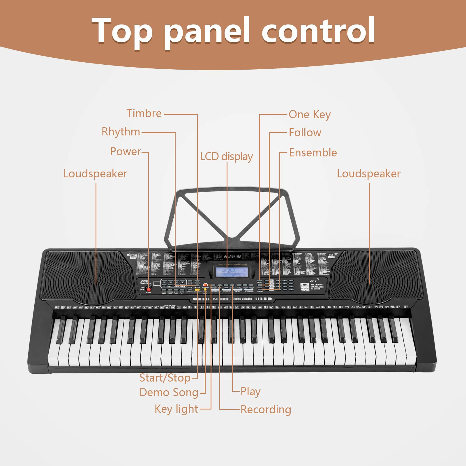 LAGRIMA 61 Key Electric Keyboard Piano w/Light Up Keys for Beginner, Lighted Portable Keyboard w/Music Player Function, Micphone, Power Supply, Music Stand, Black by LAGRIMA (Image #3)
