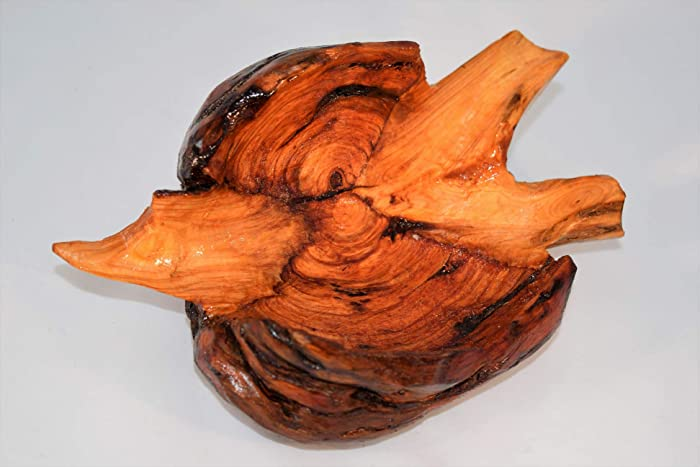 Amazon com: Live Edge Pine Burl Knot Bowl - One of a Kind