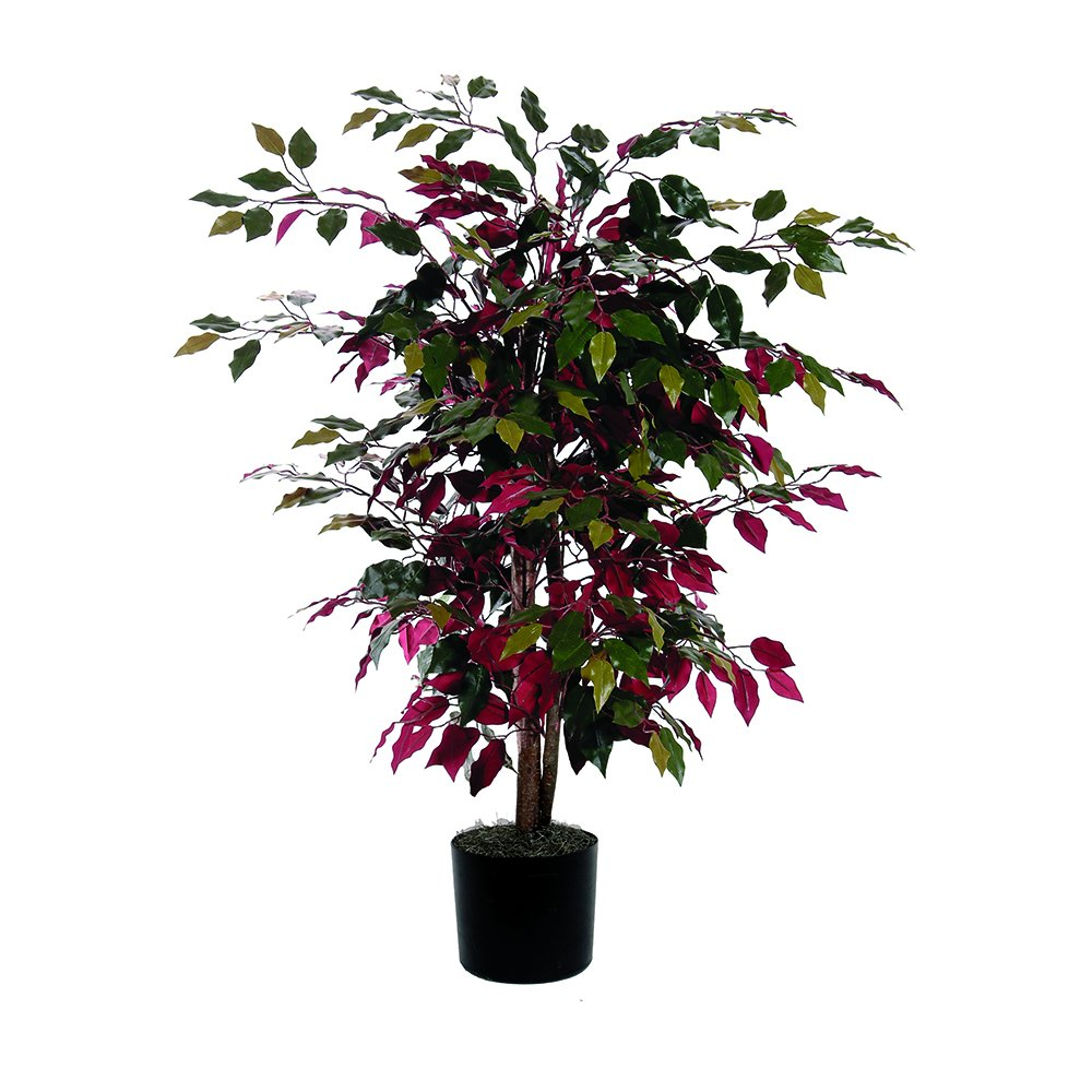 Vickerman TBU0340-06 Everyday Bush