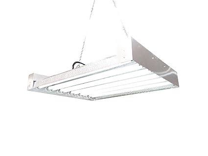 Amazon.com : T5 HO Grow Light - 2 FT 12 Lamps - DL8212 Fluorescent ...