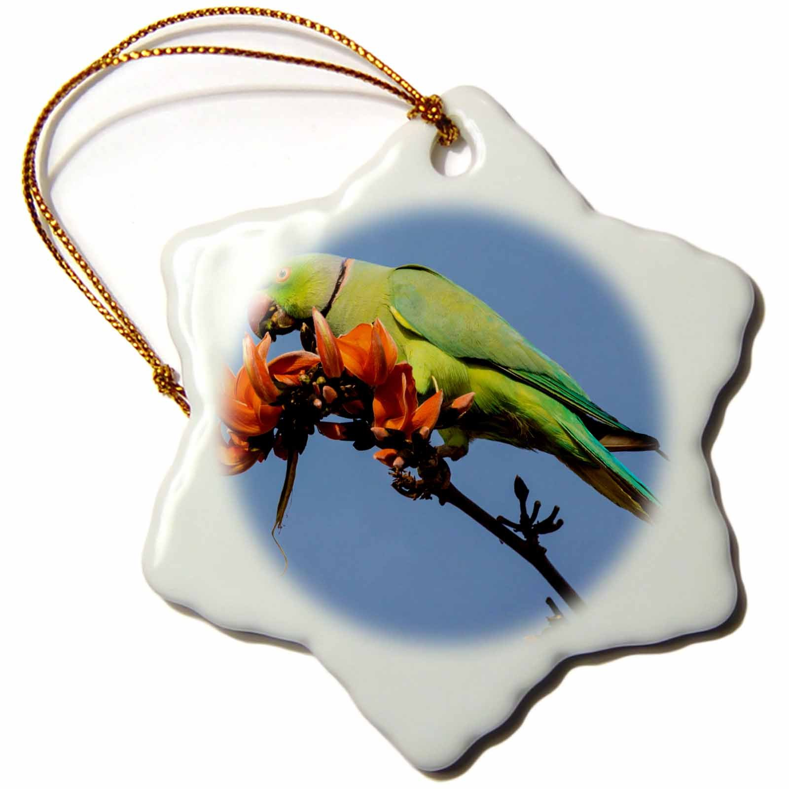 3dRose Danita Delimont - Parrots - India. Rose Ringed Parakeet in a flame of the forest tree. - 3 inch Snowflake Porcelain Ornament (orn_276798_1)