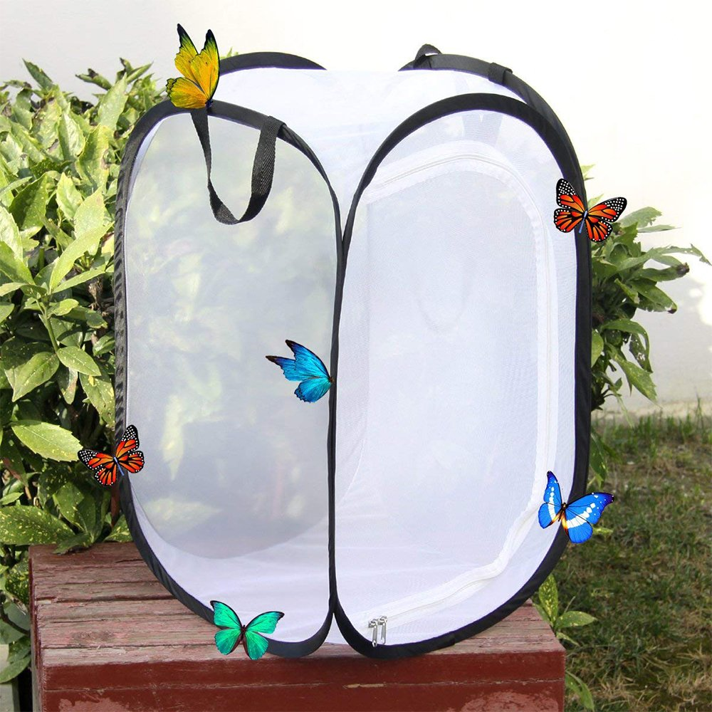 FJROnline Collapsible Insect and Butterfly Habitat Terrarium Pop-up 23.6 inches Tall Kids Butterfly Net (Black)