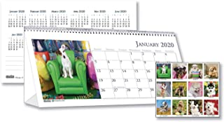 product image for House of Doolittle Puppy Photos Desk Tent Monthly Calendar, 8-1/2 x 4-1/2