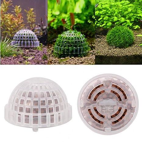 ECMQS DIY acuario decoración accesorios Acuario Media musgo Ball Soporte de filtro para Live de cristal