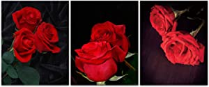 """Modern Art Romantic Flowers Red Rose Wall Posters Painting Set of 3(8""""X10"""" Canvas Picture) Bathroom Bedroom Living Room Spa Washing Room Art Prints Home Decor Unframed"""