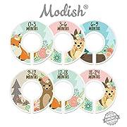 Modish Labels Baby Nursery Closet Dividers, Closet Organizers, Nursery Decor, Baby Girl, Woodland, Fox, Bear, Owl, Hedgehog