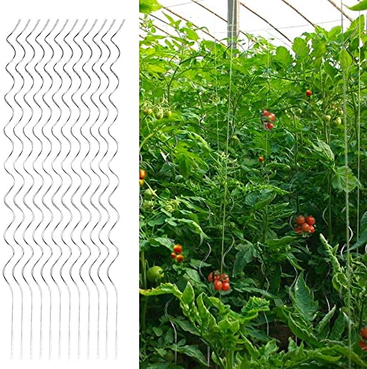yahee 20 x Tomate – Varilla Tomates en espiral (Rank ayuda Maceta ...