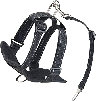Nero XL Kaka mall Pettorina di Sicurezza per Cani con Clip da Cintura Auto Imbracatura Cane Piccoli Medi Grandi Riflettente Regolabile Imbottita per Trasporto Passeggio Viaggio