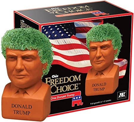 Amazon.com: Chia Pet Barack Obama, maceta decorativa ideal ...