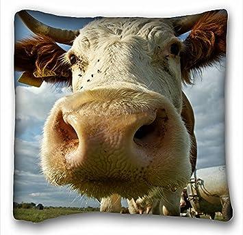 taie d oreiller vache My Honey Taie d'oreiller Taie d'oreiller Vache Muselière cornes 18  taie d oreiller vache