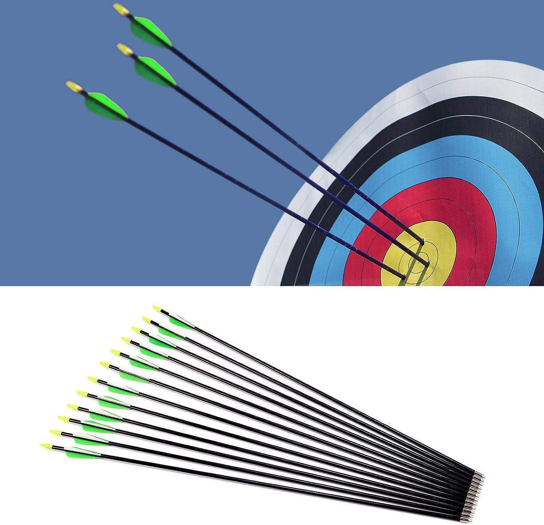 Flechas de Fibra de Vidrio Carb/ón para Tiro con Arco Recurvo 3 Colores Elegible 74cm//79cm//84cm Surepromise 12pcs 28//30//32 Verde y Blanco, 32//84cm