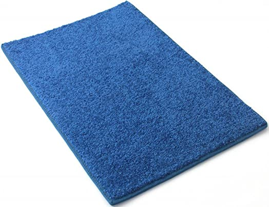 Koeckritz Rugs Affordable 8 x 10 Area Rug Bright Blue
