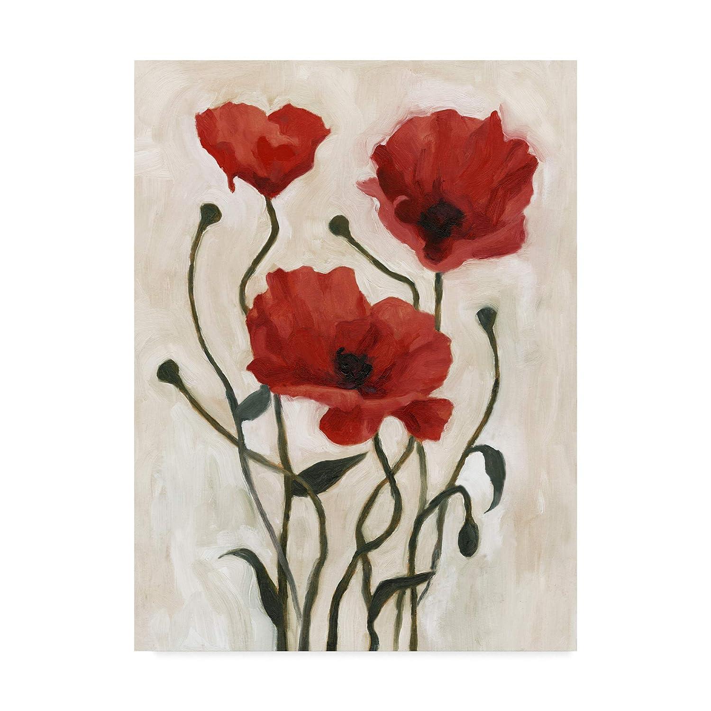 Trademark Fine Art Poppy Bouquet I by Emma Scarvey, 14x19