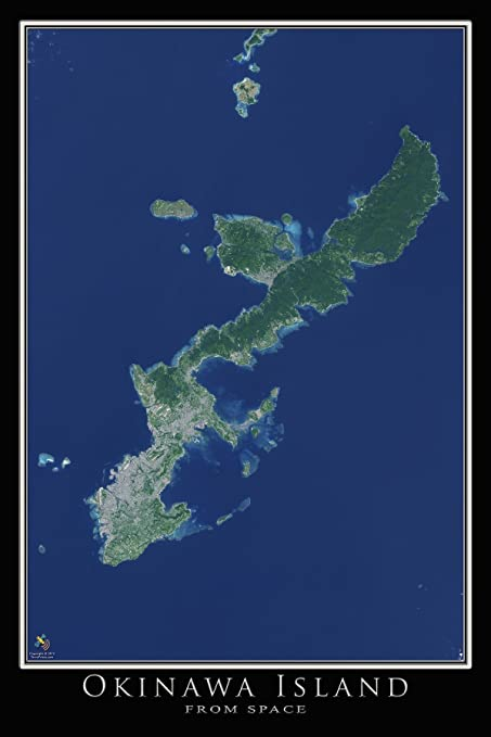Terra Earth Map.Amazon Com Terra Prints Okinawa Island Japan Satellite Poster Map L