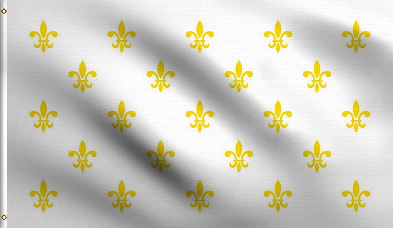 DMSE White Fleur De Lis Many French France Royal Flag 3X5 Ft Foot 100% Polyester 100D Flag UV Resistant (3' X 5' Ft Foot)