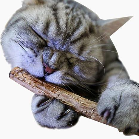 Fossrn 2Pc Juguetes Gatos Catnip Juguetes Gatos CañA Morder Masticar Palo Juguete