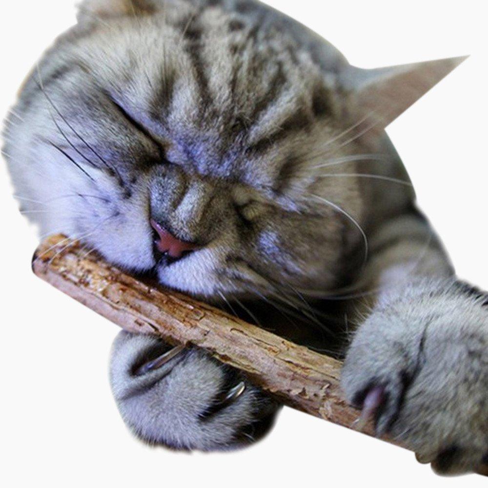 DEESEE(TM) 2PCS Pet Cat Kitten Chew Stick Toy Catnip Molar