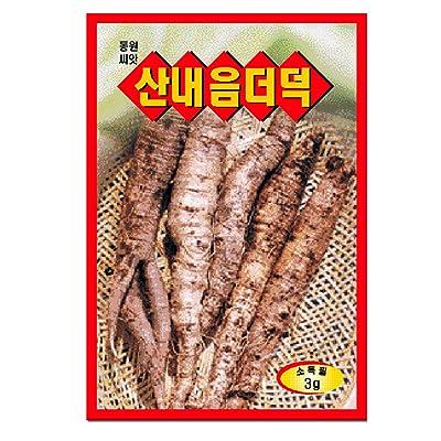 Dedeok codonopsis seeds. Korea 1pack : Garden & Outdoor
