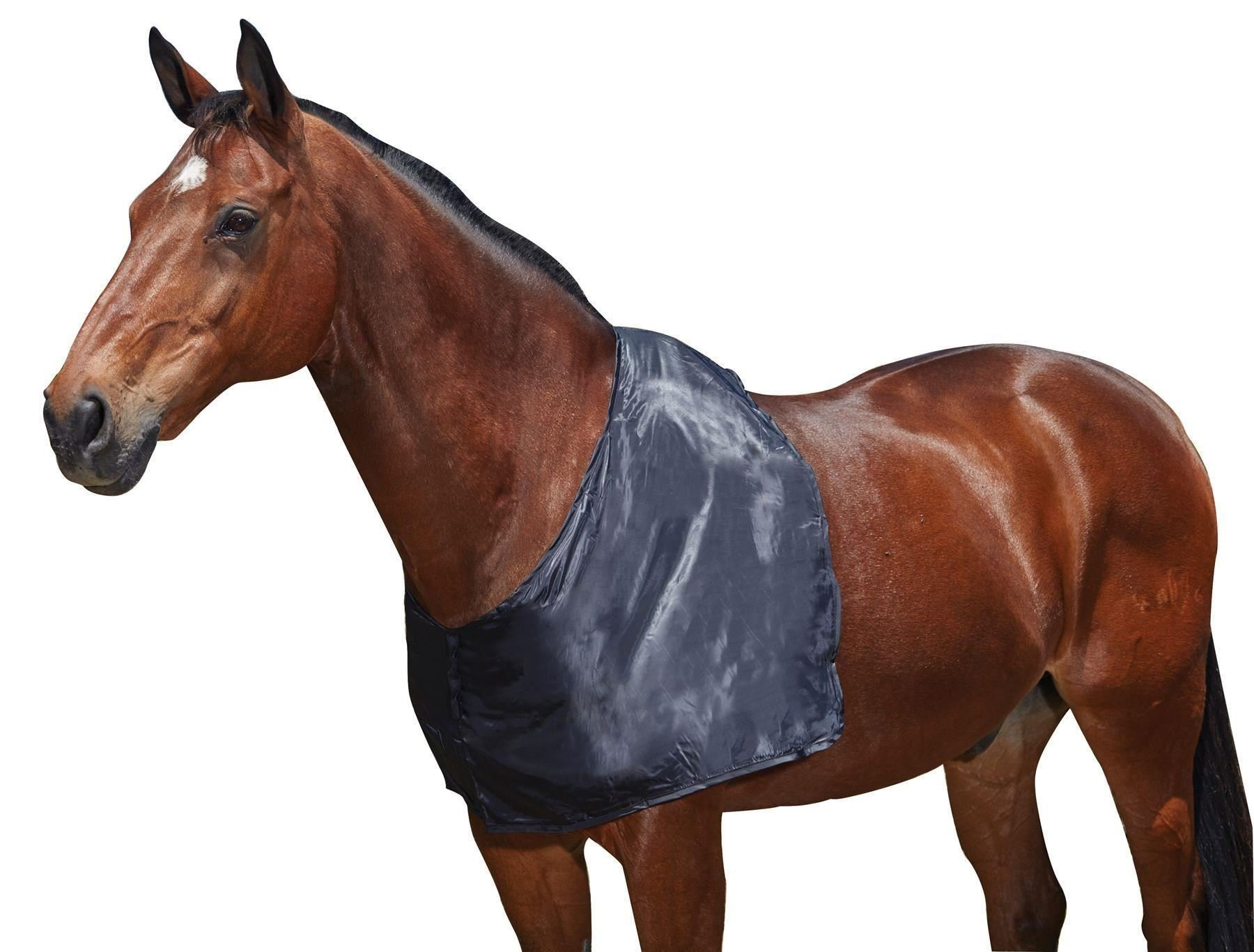 Weatherbeeta Satin Shoulder Guard Full Size Black