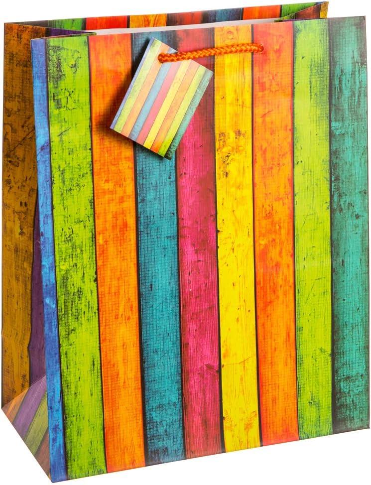 Raccoglitore semirigido Campus Light 32 x 26 cm per formato A4 con 4 anelli da 1 colore casuale 5 cm copertina in polipropilene Exacompta 51463E
