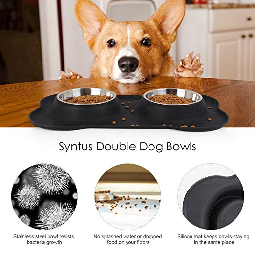 amazoncom syntus double dog bowls stainless steel dog pet feeder with nonskid silicon mat for puppy dogs cats and other pets pet