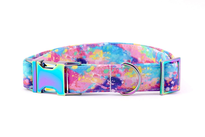 Rainbow Paint Splatter Dog Collar