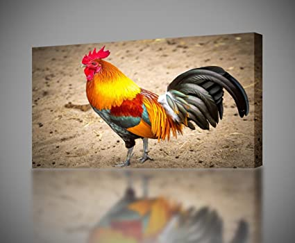 Rooster CANVAS PRINT Wall Home Decor Giclee Art Poster Animals CA941