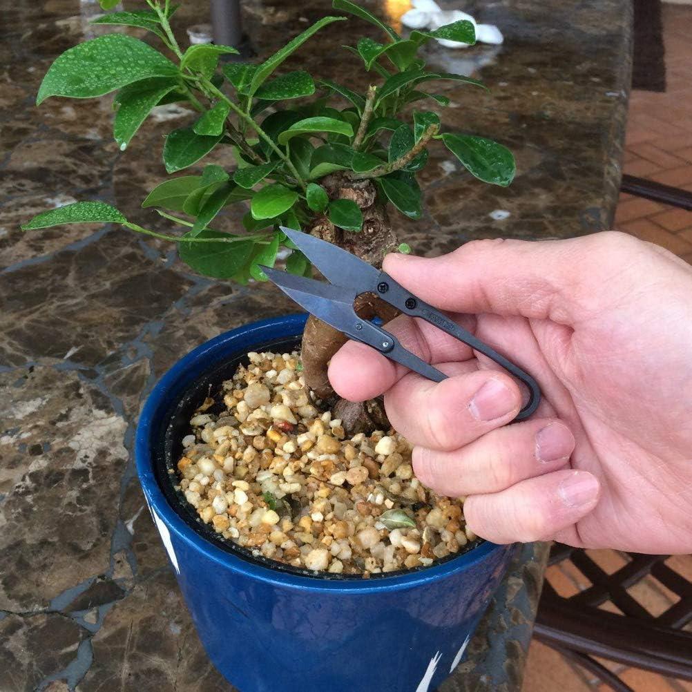 Forbici da taglio per bonsai Edinber