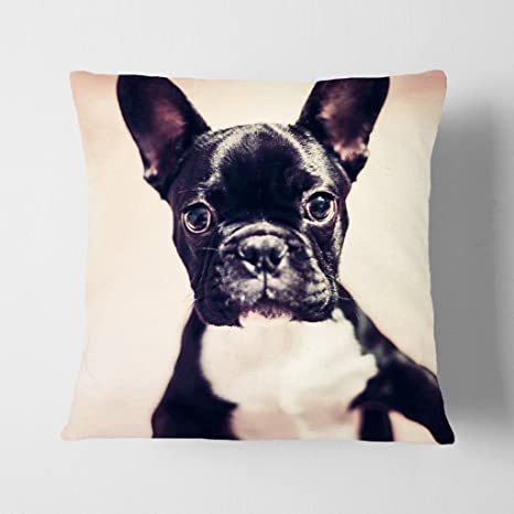 "Big Box Art ""Blanco de Bulldog Francés Cachorro Perro cojín Manta Almohada, 43"
