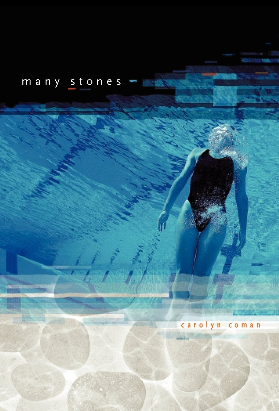 Download Many Stones ebook