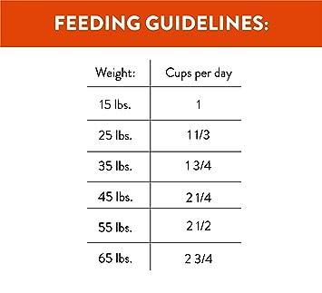 NUTRO Ultra Grain Free Dry Dog Food