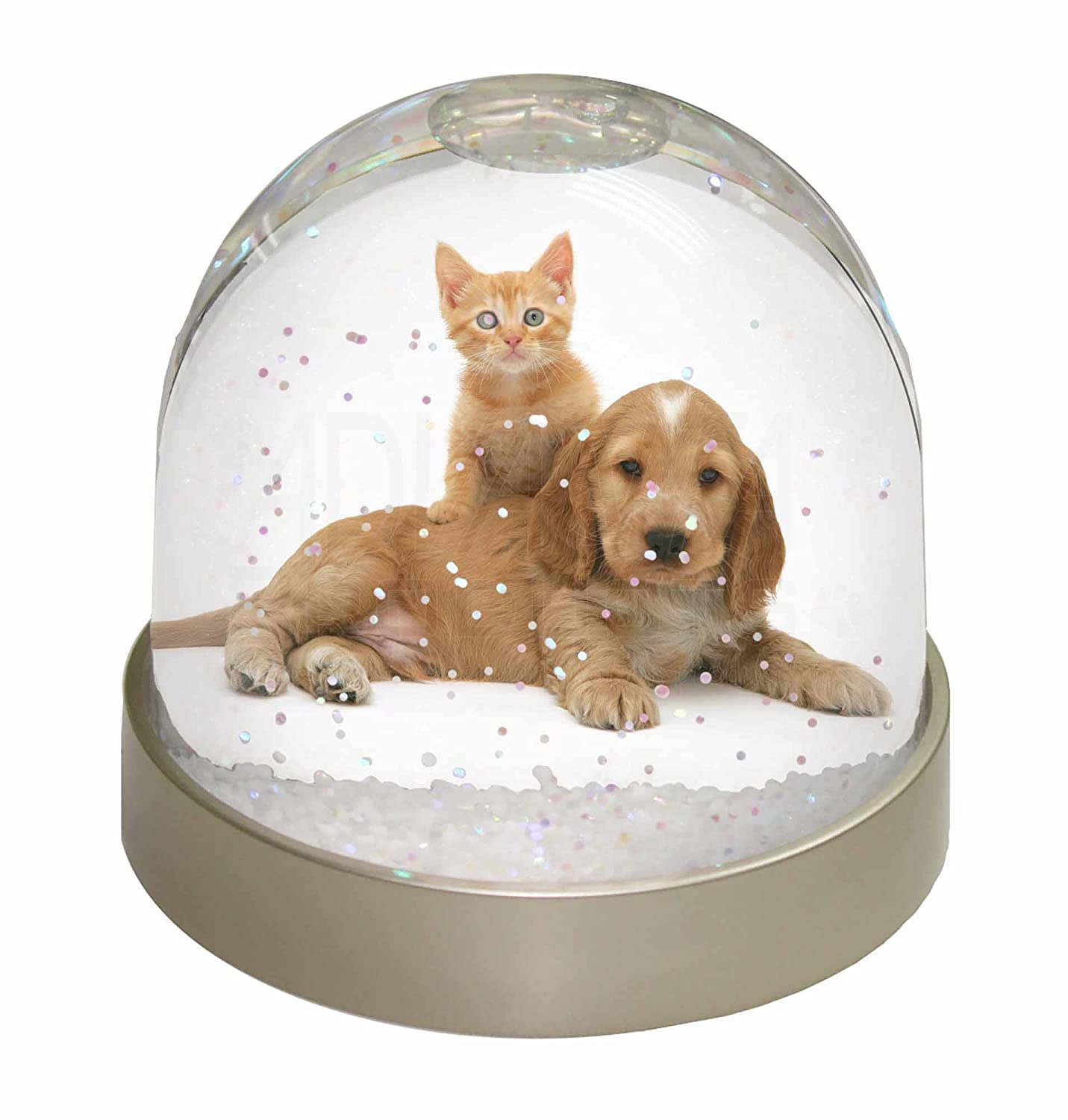 Advanta Cocker Spaniel and Kitten Love Snow Dome Globe Waterball Gift, Multi-Colour, 9.2 x 9.2 x 8 cm Advanta Products AD-SC14GL