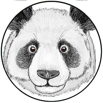 Amazon Com Short Plush Rugs Matanimal Asian Panda Fluffy Cute Fat