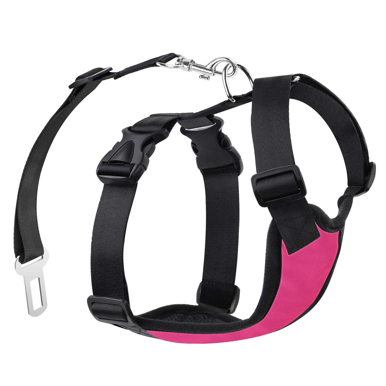 Car Harnesses