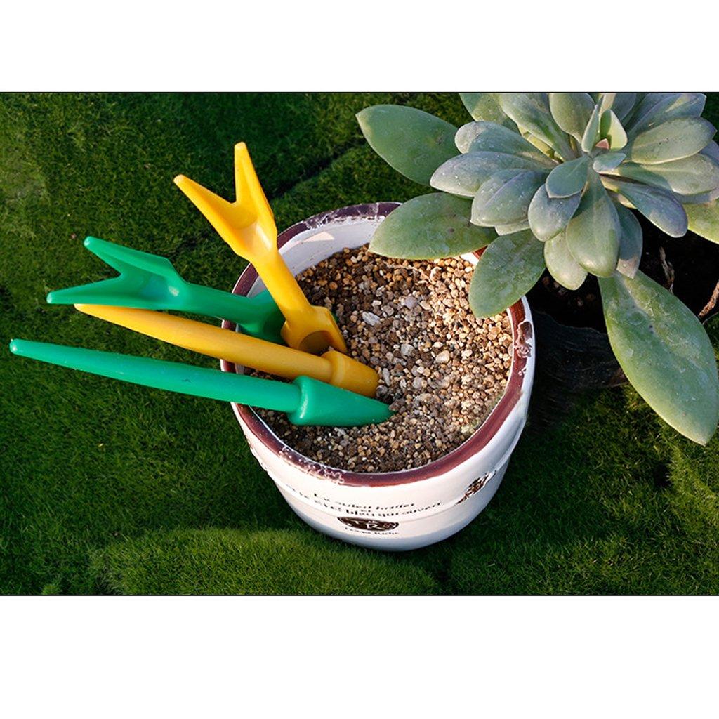 Vert Kit dOutils de Jardinage Transplantoir Perforatrice pour Jeune Plant