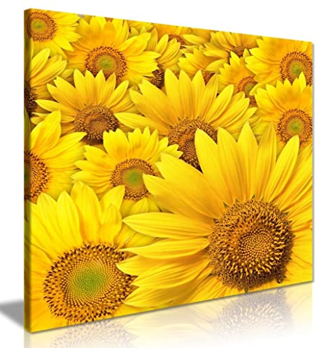 Yellow Sunflower Canvas Wall Art Picture Print (20 X 20 Inch)
