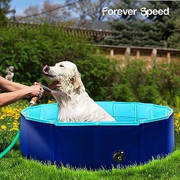 Forever Speed - Piscina para perros, piscina para gatos, piscina ...