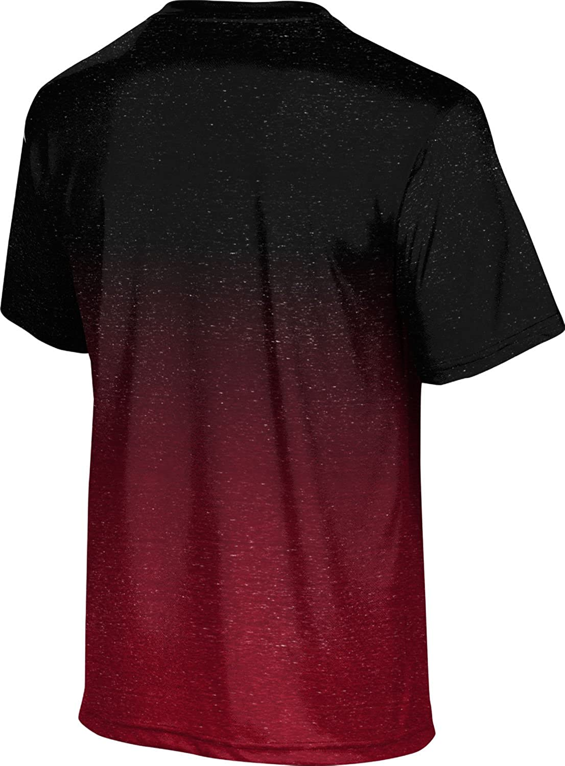 f7b41e0c7f6 ProSphere San Diego State University Men s T-Shirt - Ombre at Amazon Men s  Clothing store