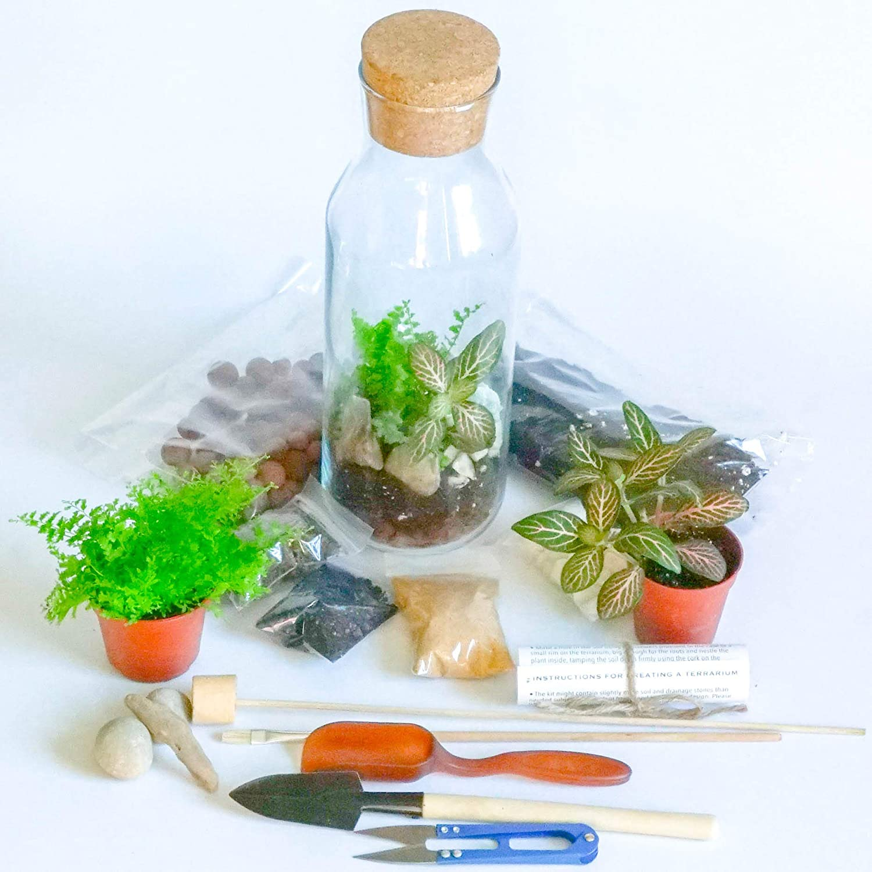 Mini jard/ín DIY Kit Idea de Regalo Concretelab/&co Terrario Kit con Recipiente de Vidrio y Corcho Tapa