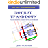 Not Just Up and Down: Understanding Mood in Bipolar Disorder (The Bipolar Expert Series Book 1)