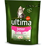 Ultima Cat Junior Comida Para Gatos con Pollo y Arroz - 400 g