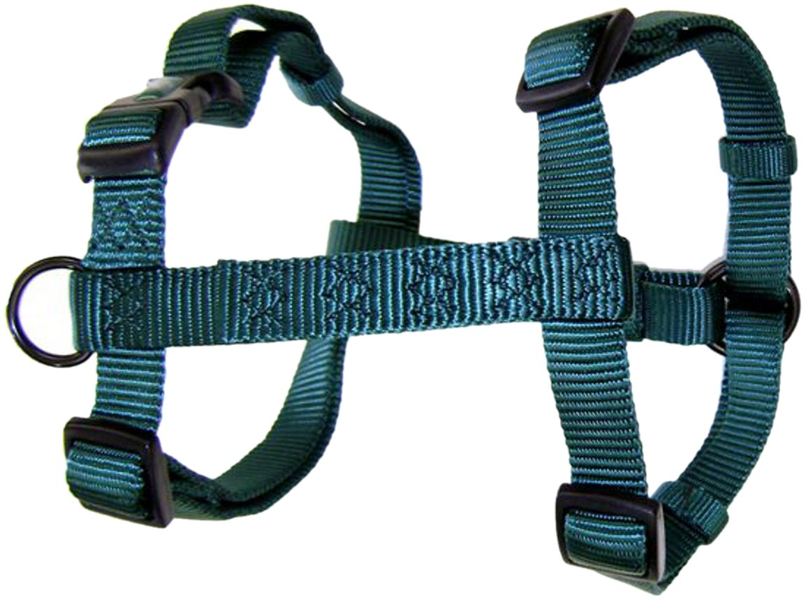 Dark green 1\ dark green 1\ Hamilton CFA XLDG Adjustable Comfort Nylon Dog Harness, Dark Green, 1-Inch x 40-50-Inch