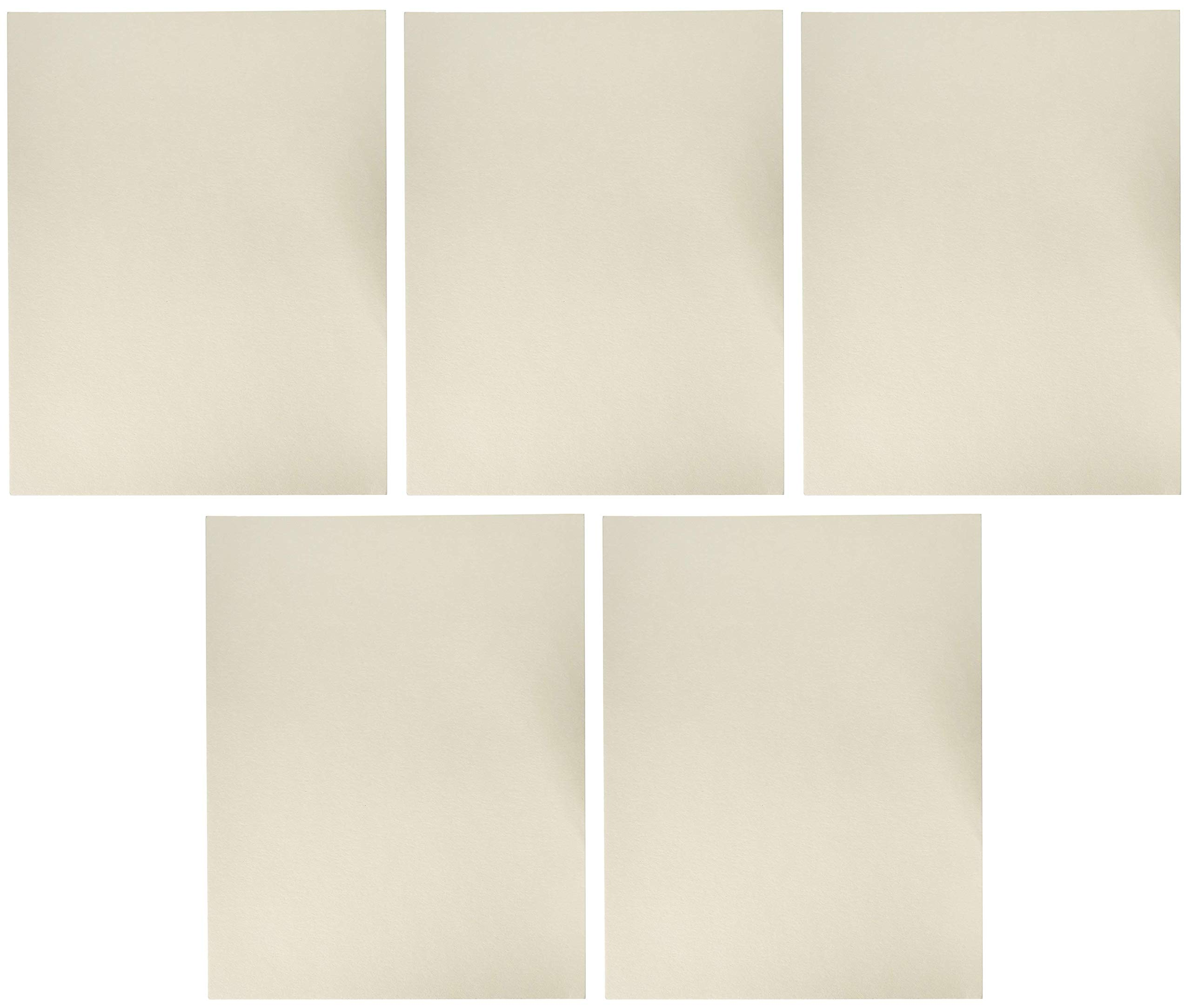 Arnold Grummer Reusable Couch Blotter Sheets, 9-1/4 x 11-3/4 Inches, 20 Sheets (Fіvе Расk)