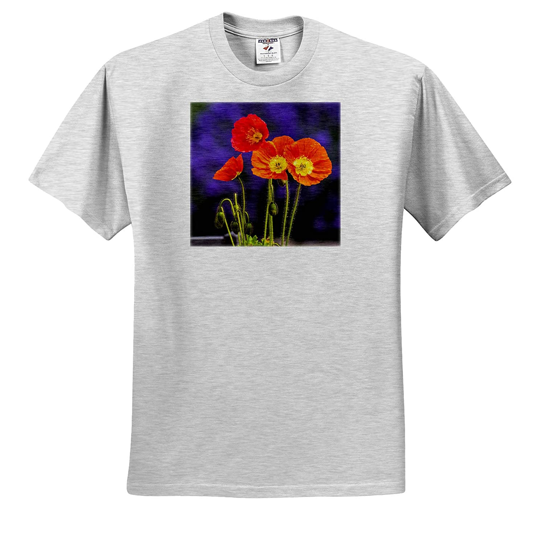 Washington State Poppies on Display Flowers USA ts/_315210 Adult T-Shirt XL 3dRose Danita Delimont