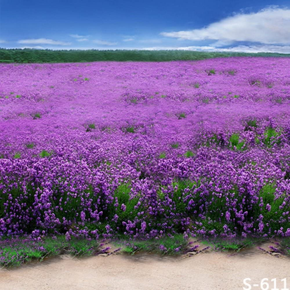 GladsBuy Magnificent Lavender 10 x 10 Computer Printed Photography Backdrop Flower Theme Background S-611