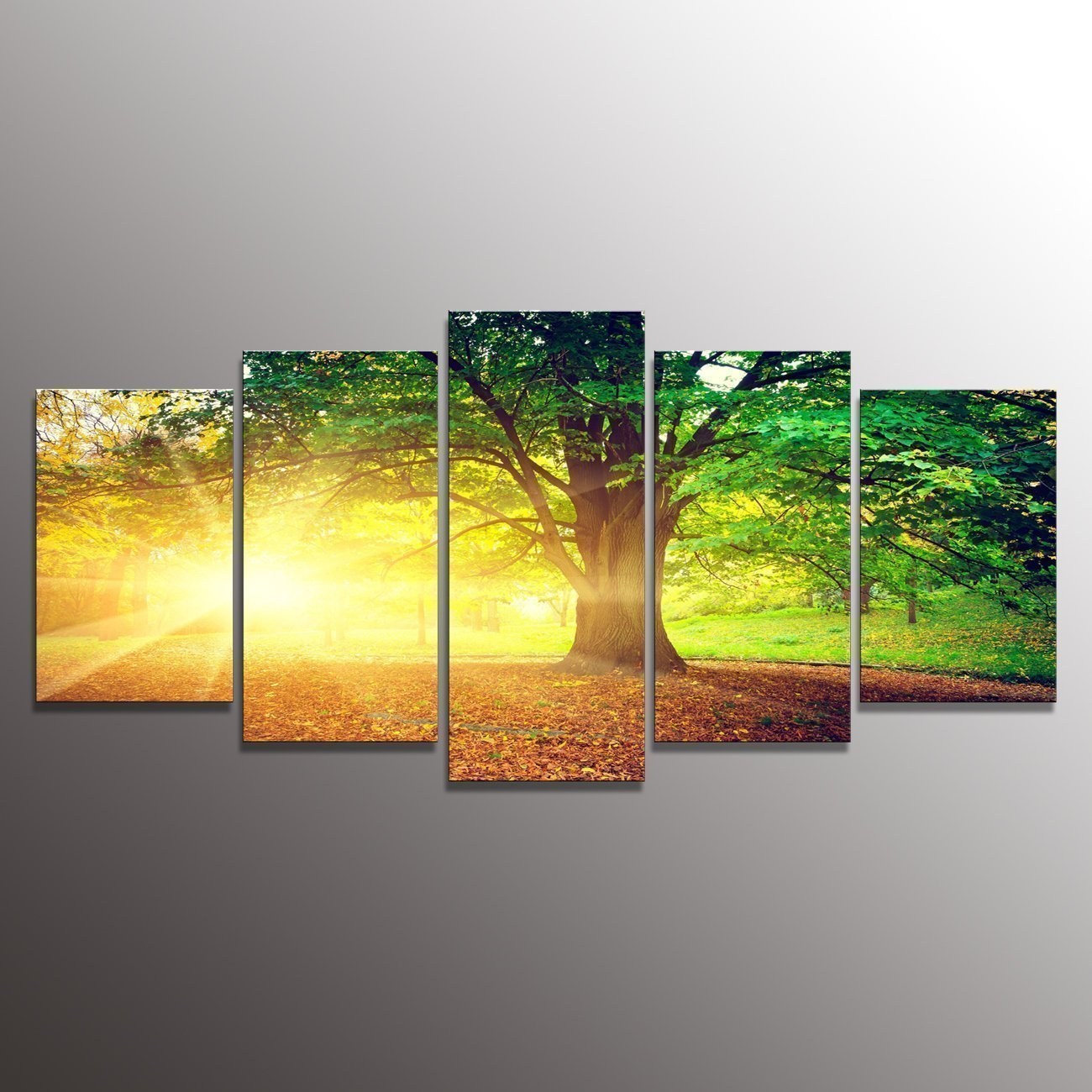Amazon.com: Formarkor Art Kx334 Canvas Print Green Forest Old Trees ...