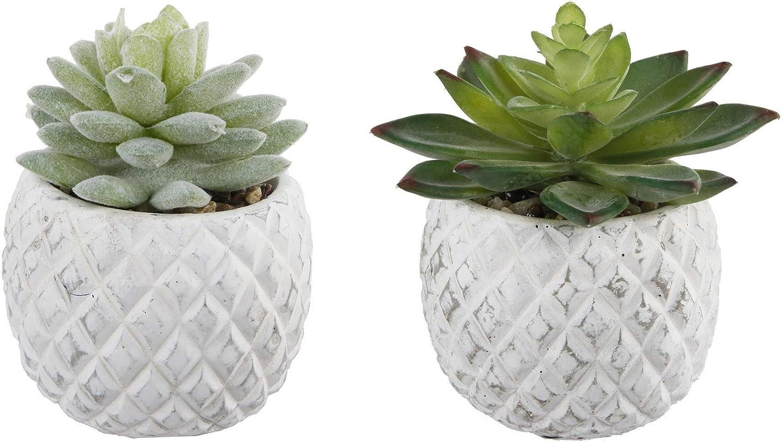 Flora Bunda Mid Century Artificial Plants Set of 2 Artificial Succulent in Cement Pineapple Pot White Planter White 3.5