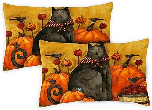 Toland Home Garden 731264 Folk Cat 12 x 19 inch Indoor Outdoor, Pillow with Insert 2-Pack