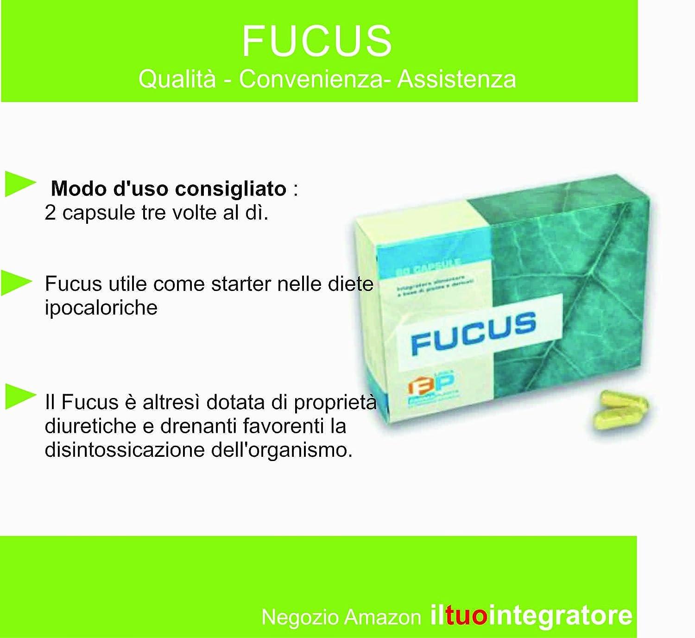 Next Nutrition Fucus control del peso corporal la reducción de peso, pérdida de peso 60 Cápsulas quemagrasa, pérdida de grasa, pérdida de peso rápida, ...